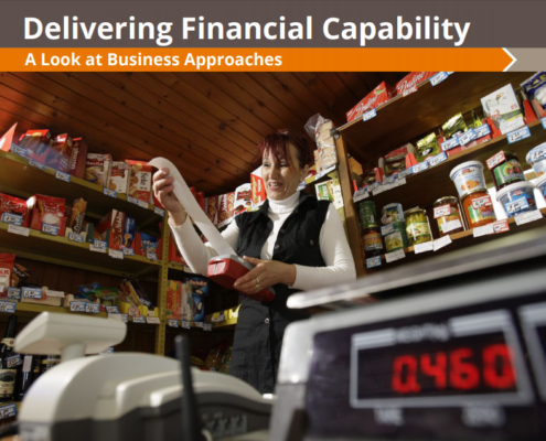 Financial Capability _ PerMicro